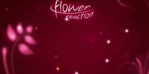 Hra - Flower Reaction