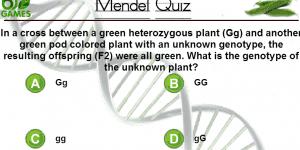 Hra - Mendel Quiz