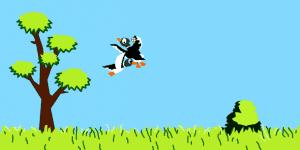 Hra - Duck Hunt